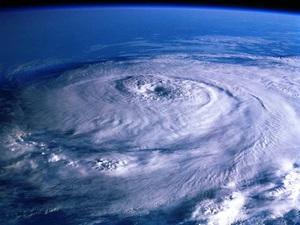 台風の次の日◎